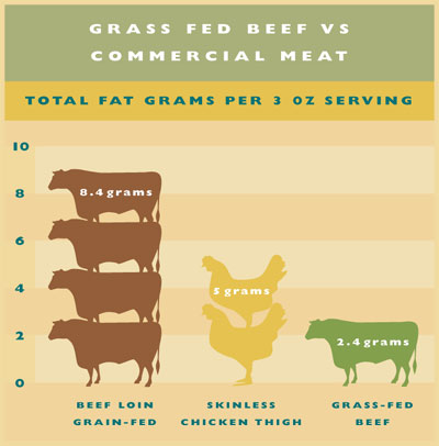 is-grass-fed-beef-really-worth-the-extra-money?